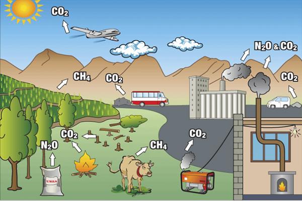 Polusi, metana, pertanian, perkebunan, peternakan, pemanasan global