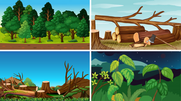 menurunnya luas hutan, hutan gundul, hutan sempit, kebakaran hutan, tandus, kekeringan, pemanasan global, global warming, dampak, penyebab, akibat
