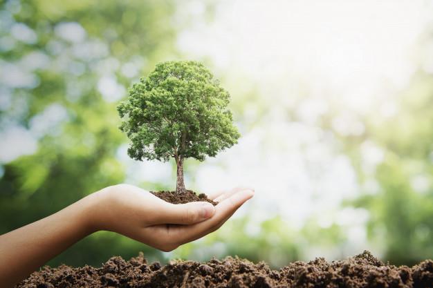 penyebab terjadinya kekeringan, penyebab pemanasan global, kekeringan, kurang air, panas, penyakit, kesehatan, alam, cuaca, iklim, tropis,
