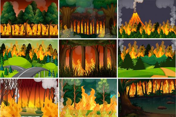 Pengrusakan hutan, pembakaran hutan, hutan gundul, kekeringan, penyebab, pemanasan global, kebakaran hutan