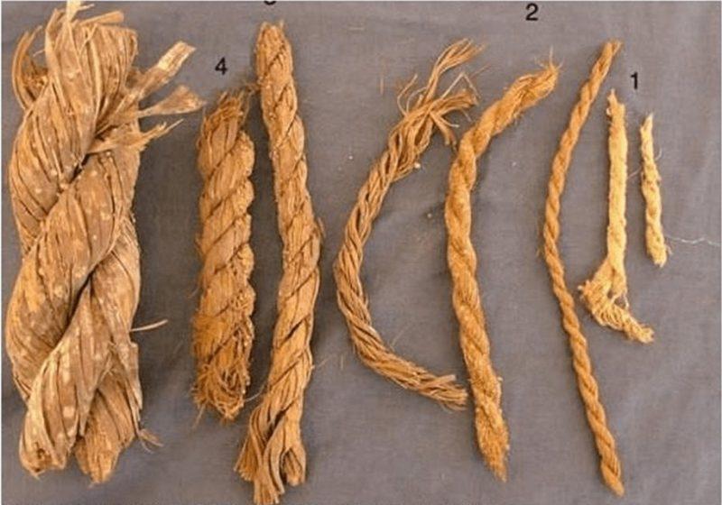 macam macam tali, macam macam tali gelang, macam macam tali jam tangan, macam macam tali kur, macam macam tali pita, macam macam: macam macam tali plastic, macam macam tali pramuka, macam macam tali sepatu, macam macam tali sepatu 5 lubang, macam macam tali tas, macam macam tali temali,