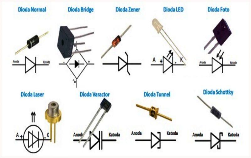 macam-macam dioda dan simbolny-macam macam dioda dan fungsinya-macam macam dioda bridge-macam-macam-dioda-schottky-macam-macam-dioda-dan-gambarnya