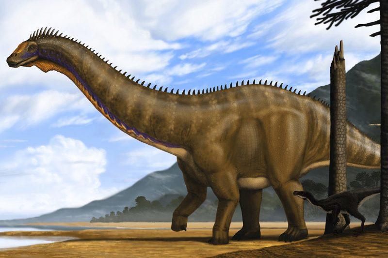 Brontosaurus atau Apatosaurus