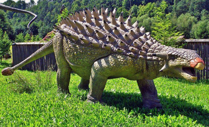 jenis jenis dinosaurus Ankylosaurus