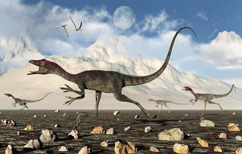 jenis jenis dinosaurus Compsognathus
