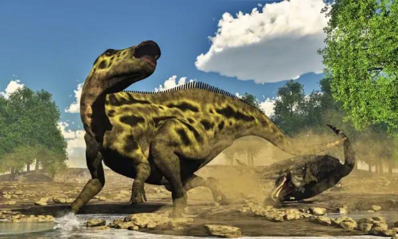jenis jenis dinosaurus Shantungosaurus