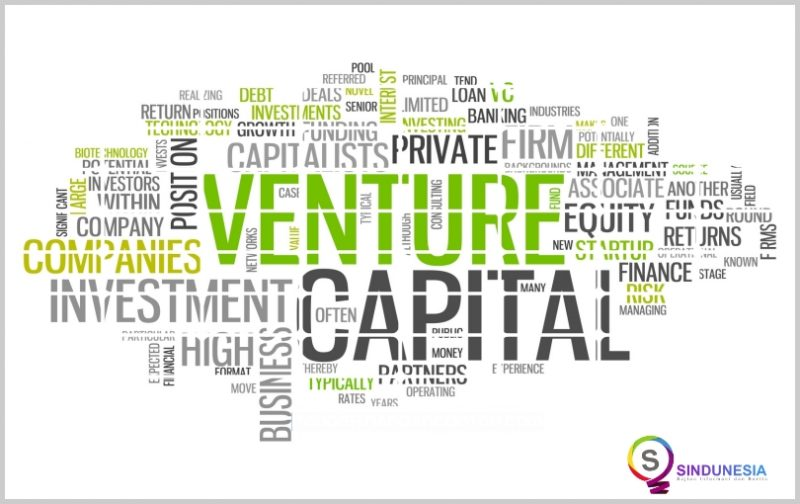 lembaga keuangan bukan bank Perusahaan Modal Ventura