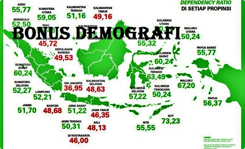 Demografi Indonesia