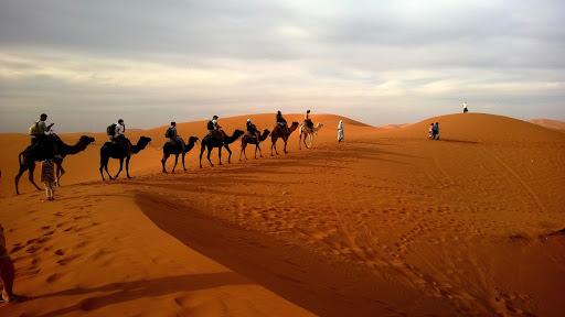 gurun arab