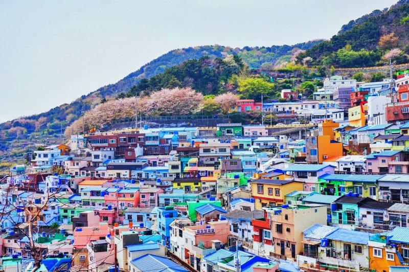LINGKUNGAN KOREA SELATAN
