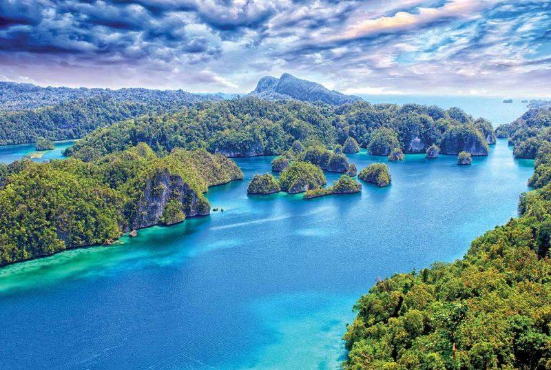 kondisi geografis pulau papua