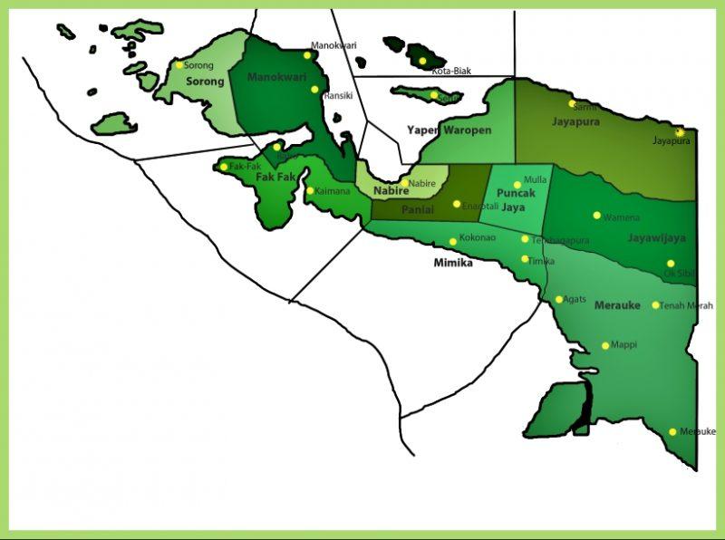 peta papua vector