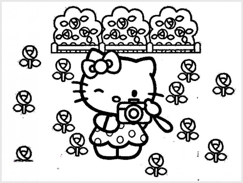 Gambar Sketsa Hello Kitty Lucu memegang kamera
