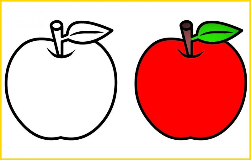 Sketsa Apel Hitam Putih dan Berwarna