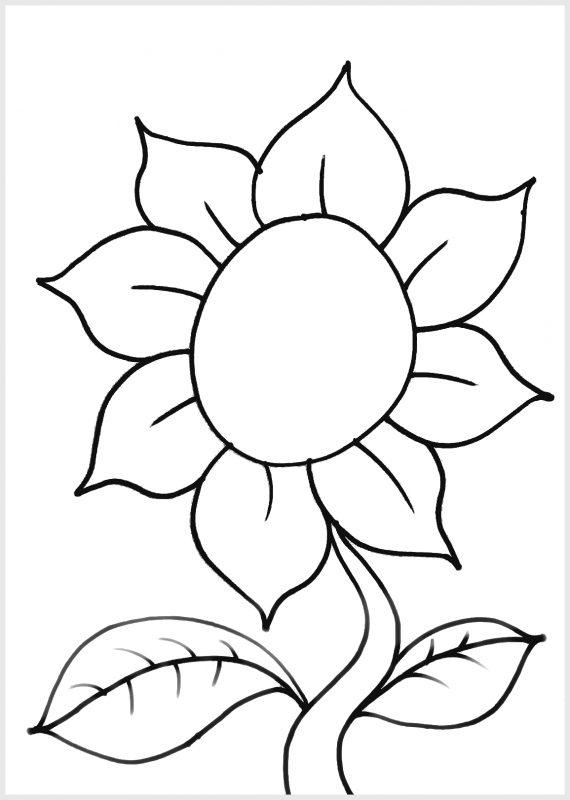 Sketsa Gambar Bunga untuk Kolase