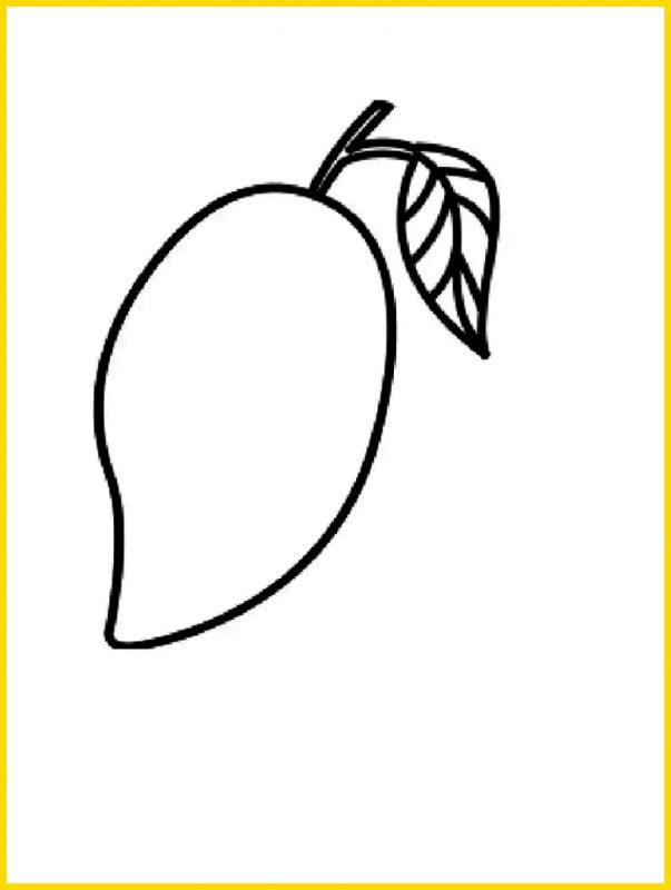 Sketsa buah Mangga Sederhana