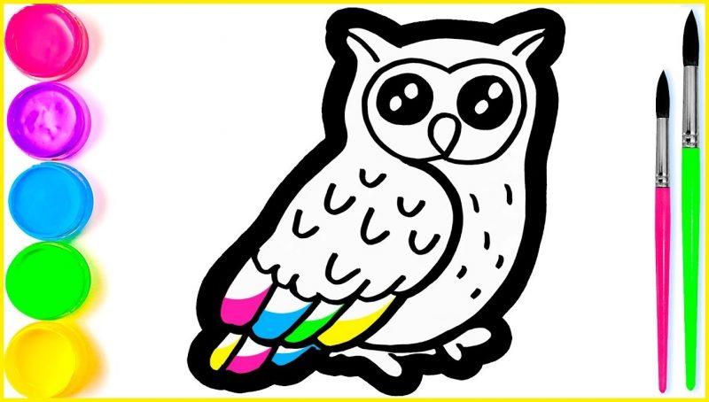 gambar sketsa burung hantu untuk mewarnai