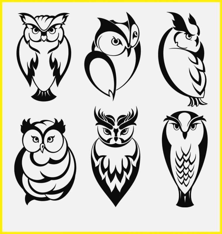 kumpulan sketsa burung hantu