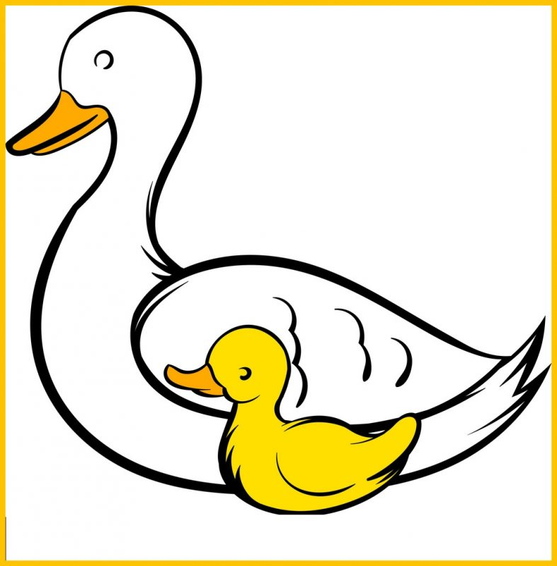 sketsa bebek lucu dan anaknya