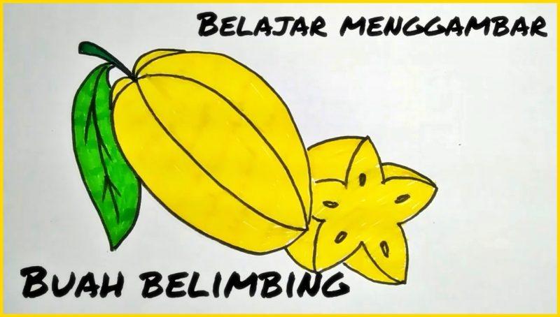 sketsa buah blimbing