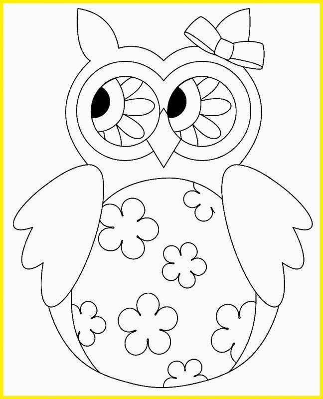 sketsa burung hantu lucu