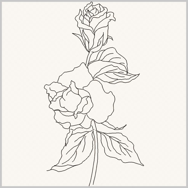 sketsa daun yang menempel di bunga