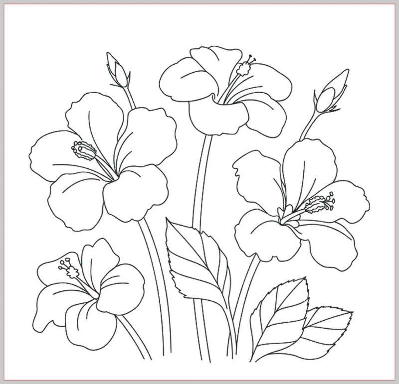 sketsa gambar bunga lengkap