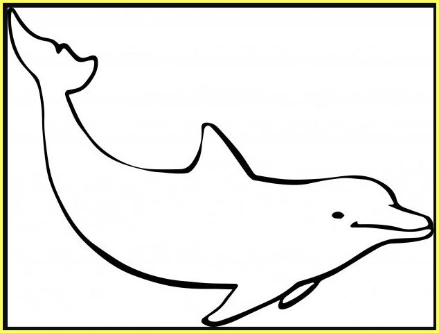 sketsa gambar ikan lumba lumba mudah