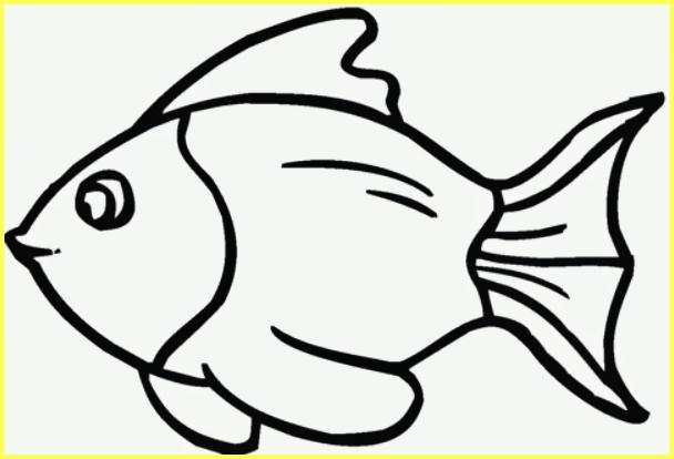 sketsa gambar ikan mas ekor simetris