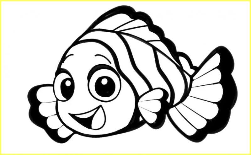sketsa gambar ikan nemo hitam putih