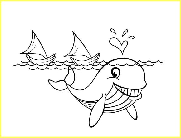 sketsa gambar ikan paus kartun