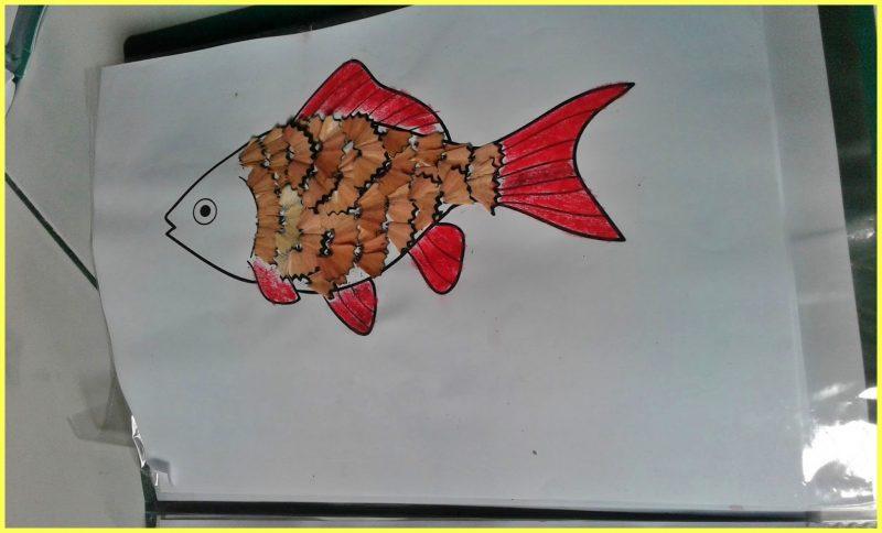 sketsa gambar ikan untuk kolase dengan serutan pensil