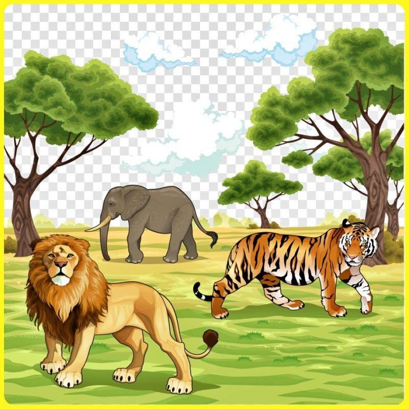 Singa di Padang Rumput