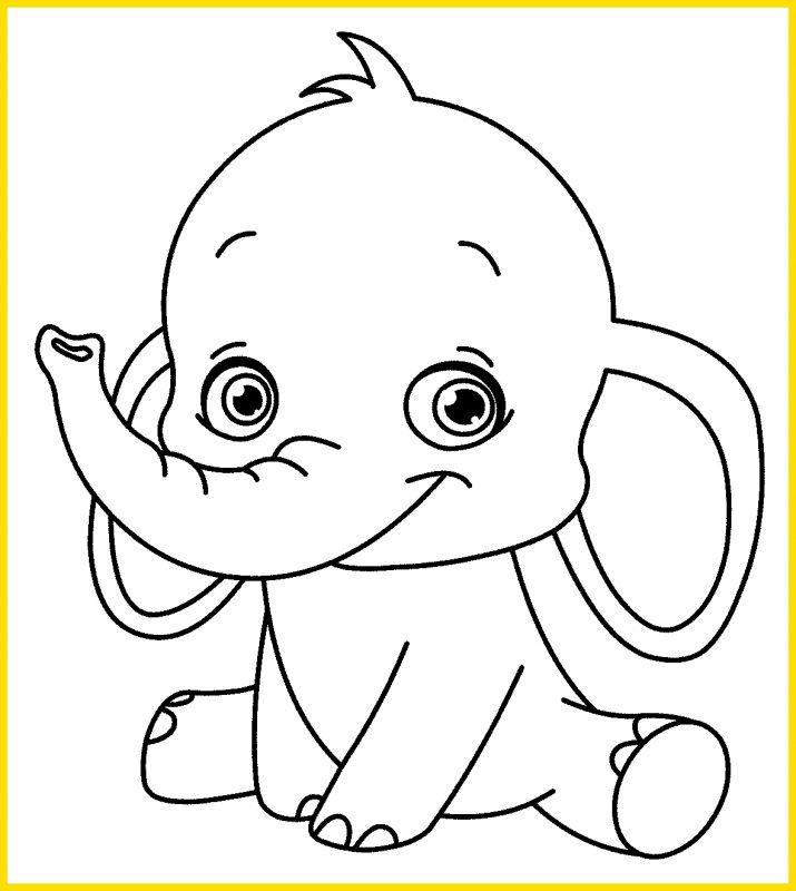 gambar gajah duduk