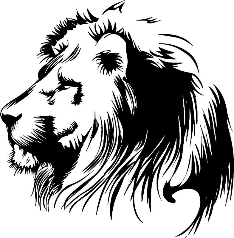 gambar singa kartun hitam putih
