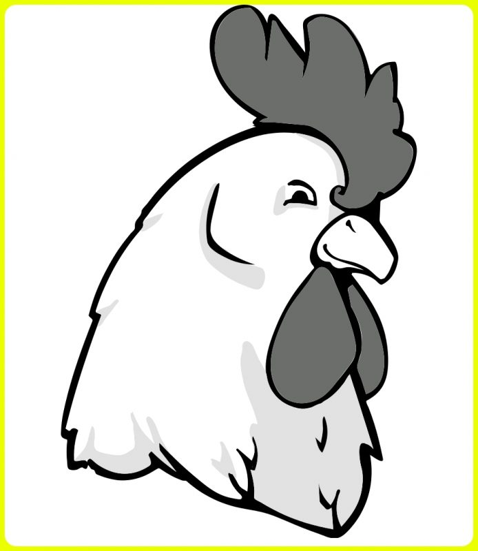 gambar sketsa ayam kartun