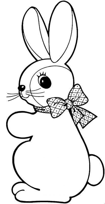 gambar sketsa kelinci menggemaskan