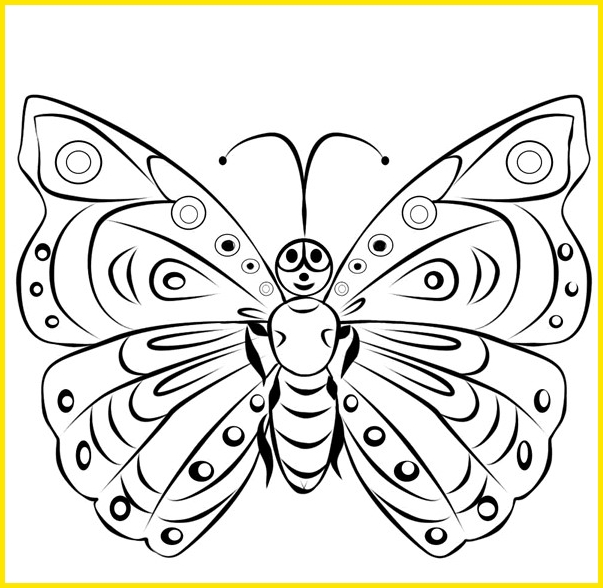 gambar sketsa kupu kupu lucu tampak depan