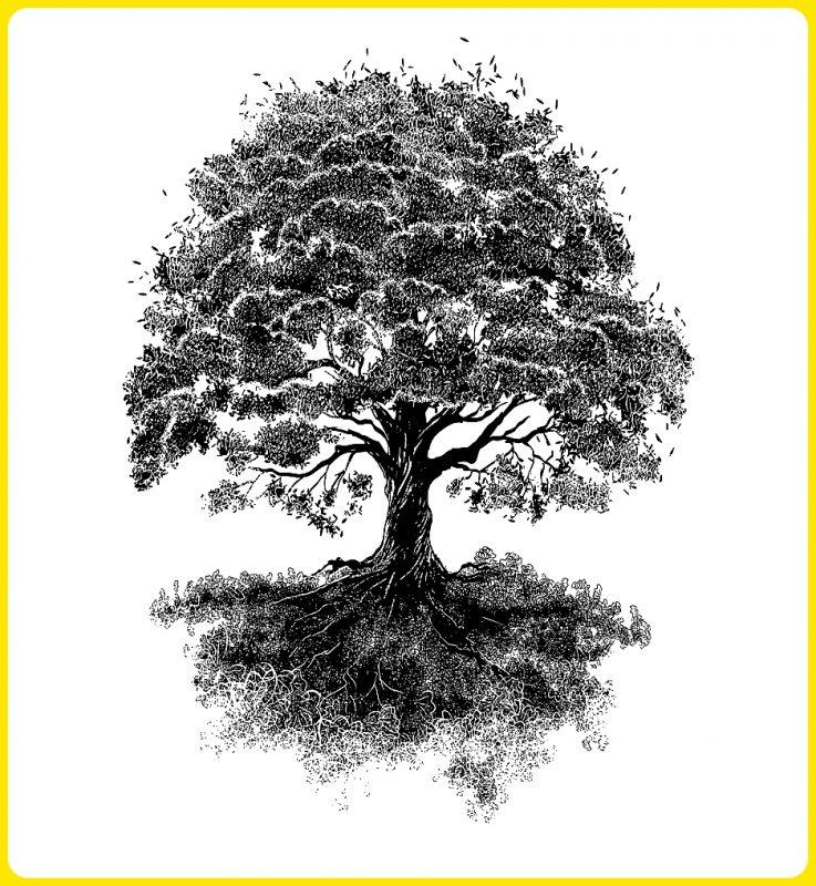 gambar sketsa pohon arsitekstur