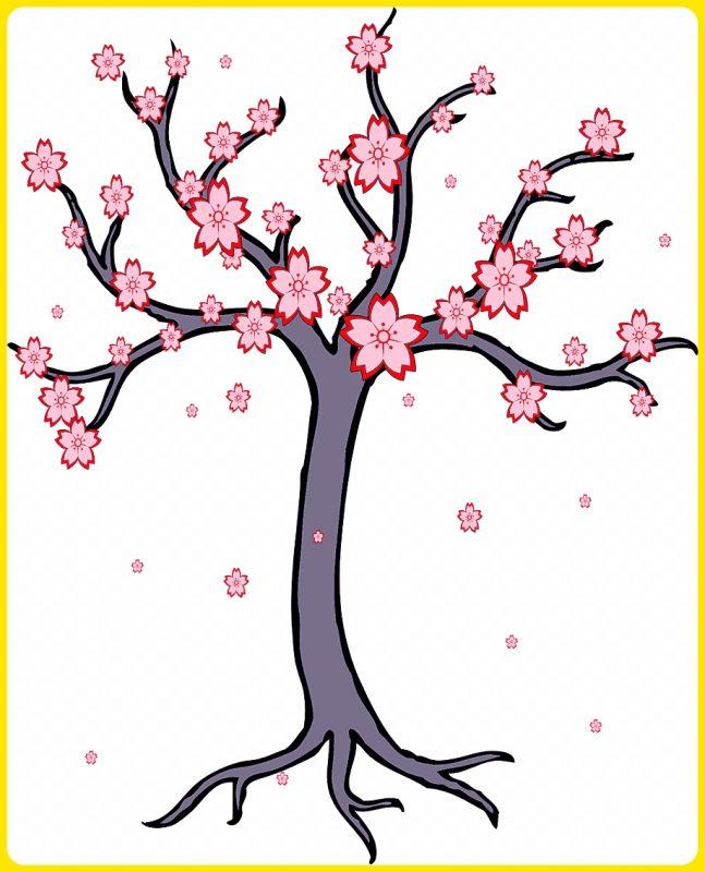 gambar sketsa pohon sakura