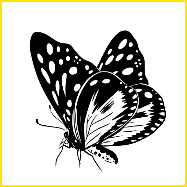 kupu kupu motif bulat