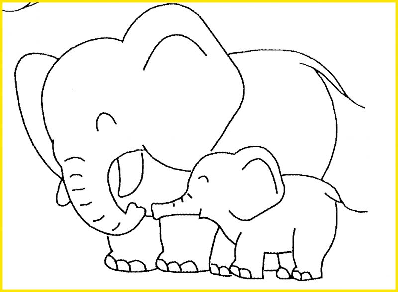 macam macam gambar sketsa gajah