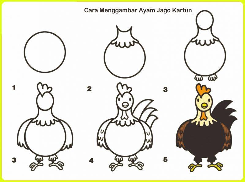 menggambar ayam dari depan