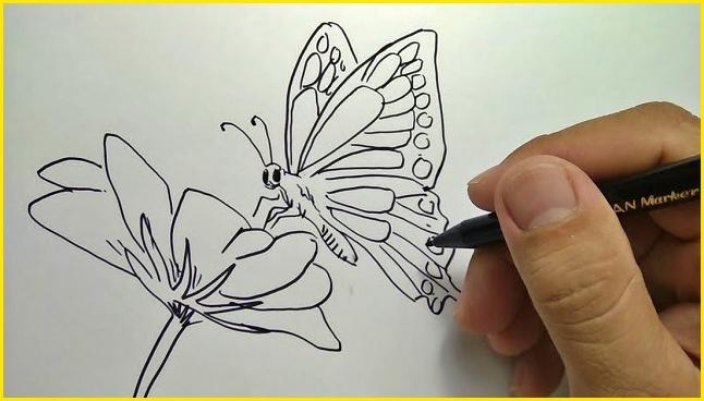 menggambar sketsa kupu kupu dengan bunga