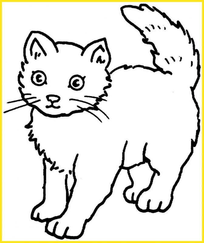 sketsa agambar kucing sederhana bergerigi