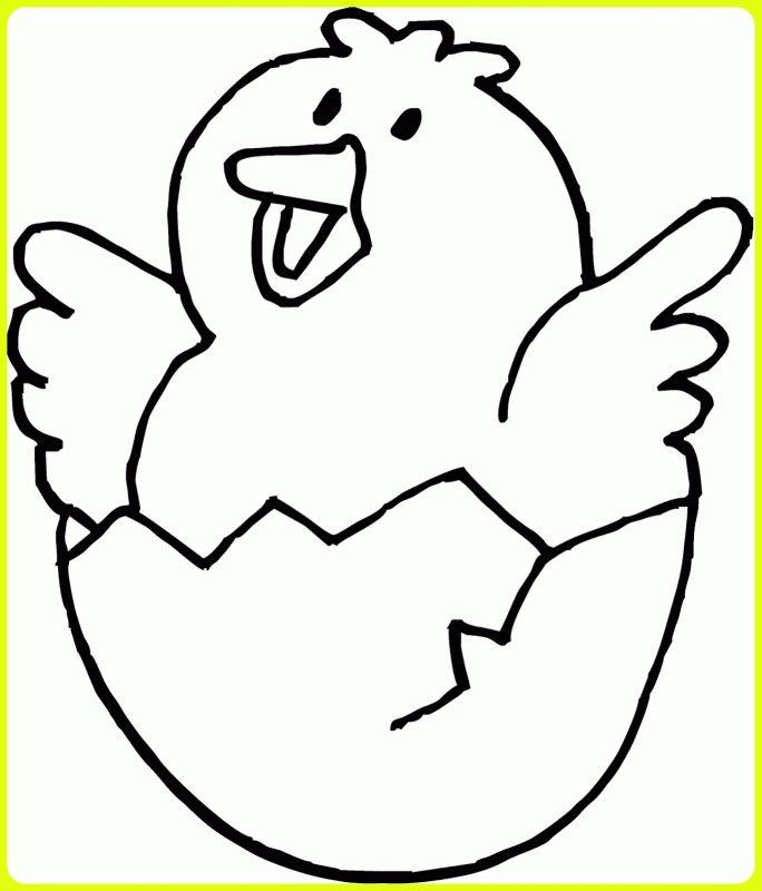 sketsa ayam kecil bahagia