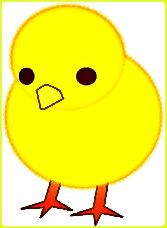 sketsa ayam kecil berwarna kuning