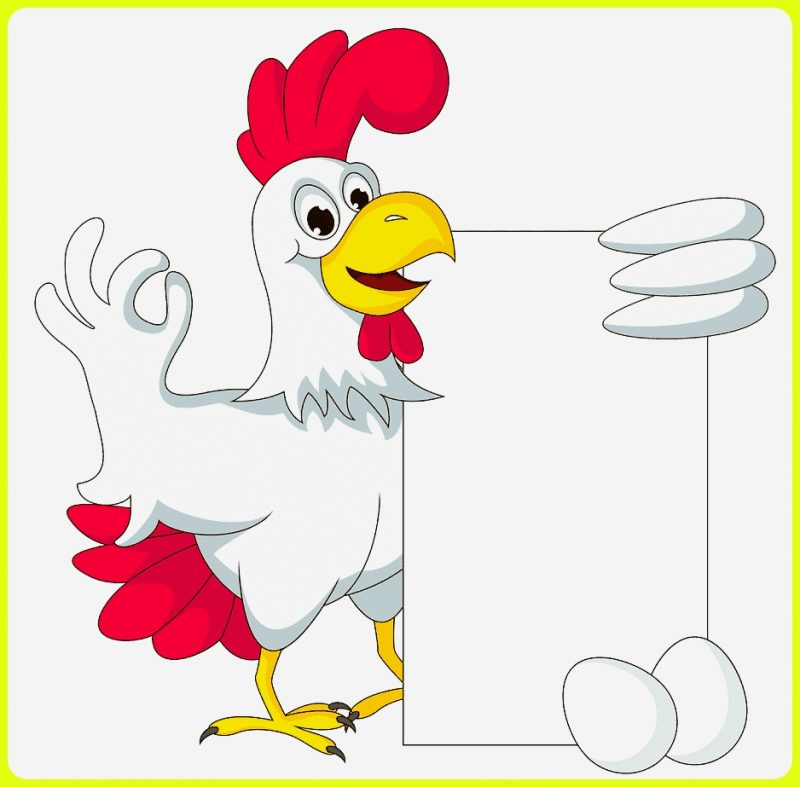 sketsa gambar ayam membawa kertas kosong