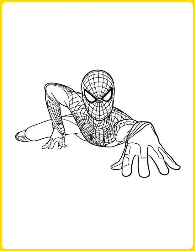 sketsa gambar kartun spiderman