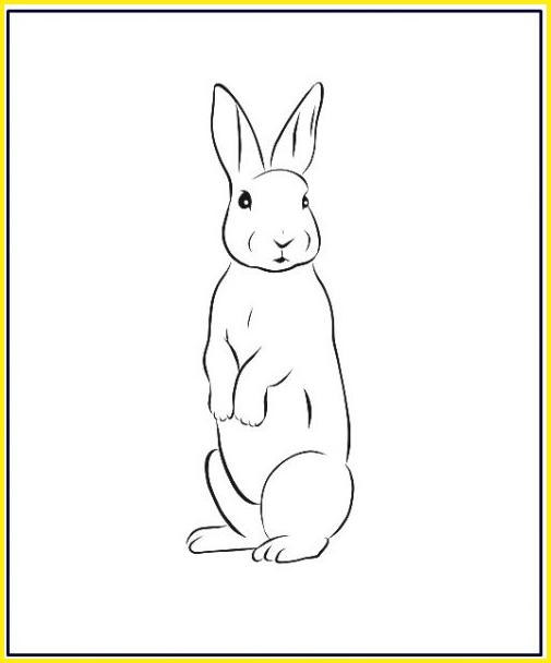sketsa gambar kelinci berdiri